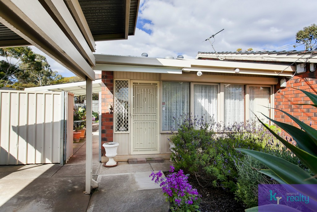 229A Kelly Road, Modbury Heights - 02