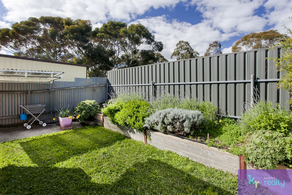 229A Kelly Road, Modbury Heights - 22